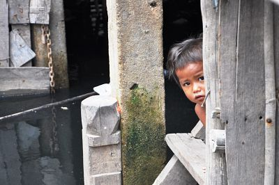 Photo for: Dengue