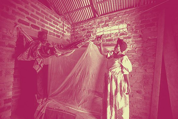Photo for: Malaria in pregnancy