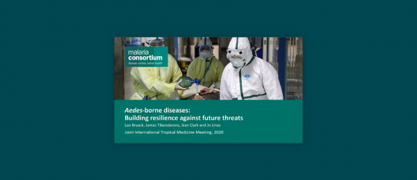 Photo for: Aedes-borne diseases: Building resilience against future threats