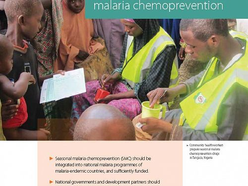 Photo for: Making the case for seasonal malaria chemoprevention