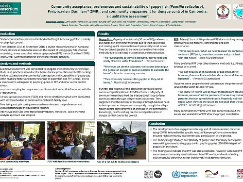 Photo for: Dengue control in Cambodia: Community acceptance and sustainability of guppy fish, pyriproxyfen, and social and behaviour change activities