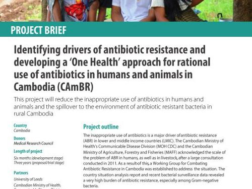 Photo for: Identifying drivers of antibiotic resistance and developing a 'One Health' approach for rational use of antibiotics in humans and animals in Cambodia