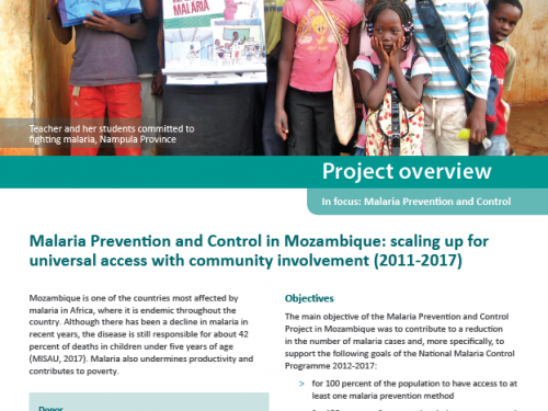 Photo for: Malaria prevention and control in Mozambique: Scaling up for universal access with community involvement (2011-2017)
