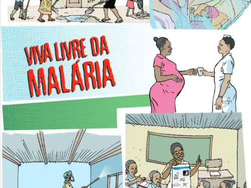Photo for: Malaria flipchart for schools
