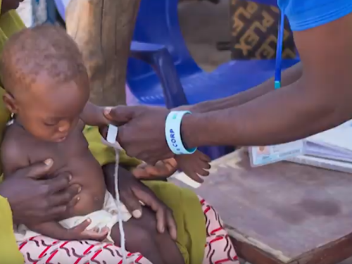 Photo for: Fighting malnutrition in rural Nigeria