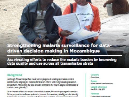 Photo for: Strengthening malaria surveillance for data-driven decision making in Mozambique