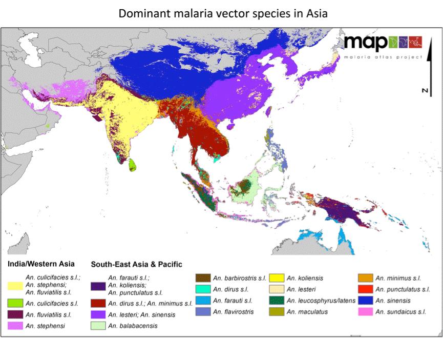 Map Of Asia Vector.Interactive Malaria Guide Malaria Information