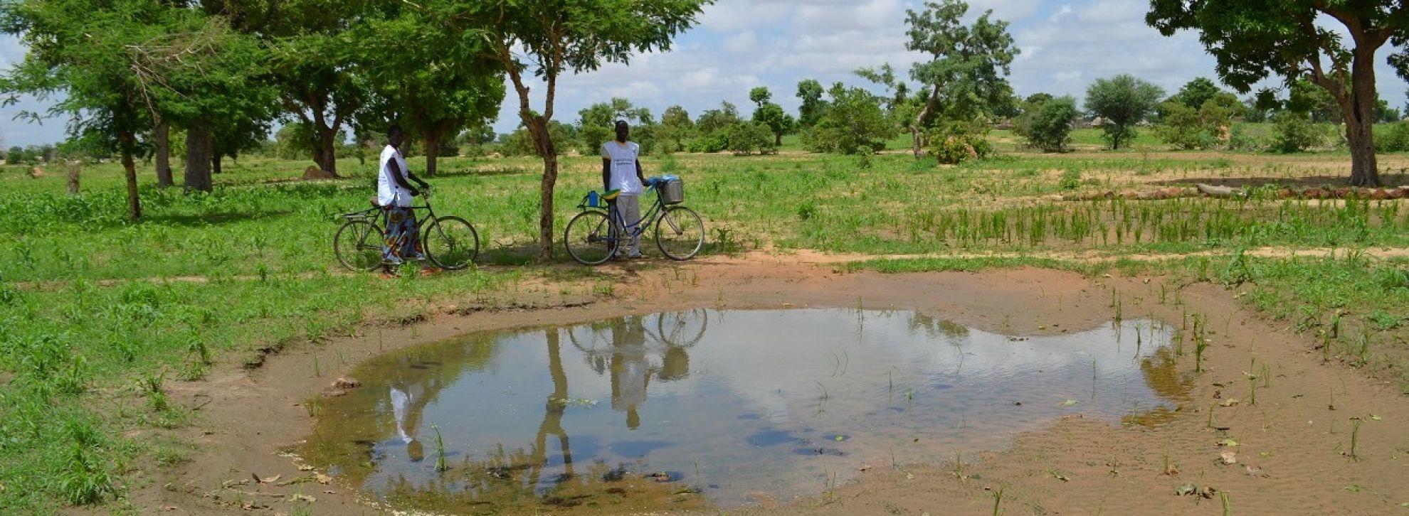 Latest News Seasonal malaria chemoprevention for the sahel