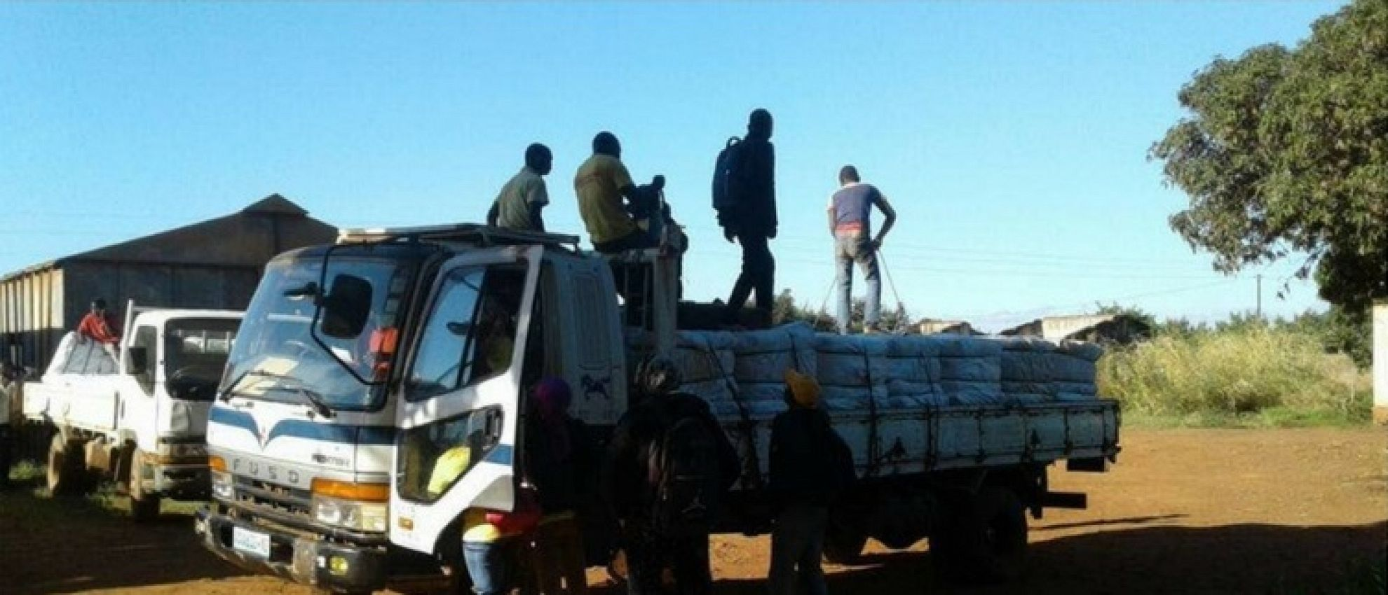 Latest News Four million nets distributed in mozambique