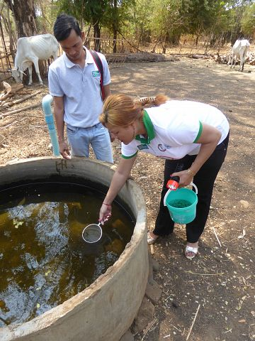 Latest News Dengue a silent issue and a growing problem