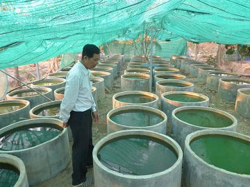 Latest News Cambodian communities fight dengue with low cost and grassroots solution