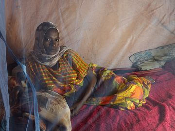 Latest News Global gains in combatting malaria have levelled off says whos annual report