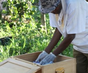 Photo for Malaria Consortium signs onto Global Action Plan