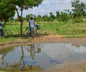 Photo for Seasonal Malaria Chemoprevention for the Sahel