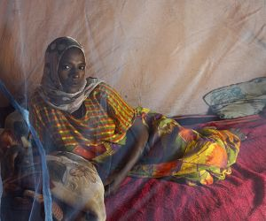 Photo for Global gains in combatting malaria have levelled off, says WHO\'s annual report