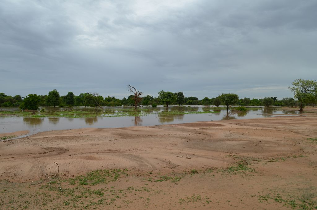 Image for Case Study: Feedback from the field, Burkina Faso