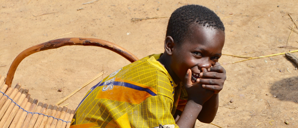 Image for The cost of protecting children in the Sahel from malaria