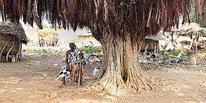 ACCESS-SMC - Update on SMC programs in Guinea, Mali, Niger and The Gambia