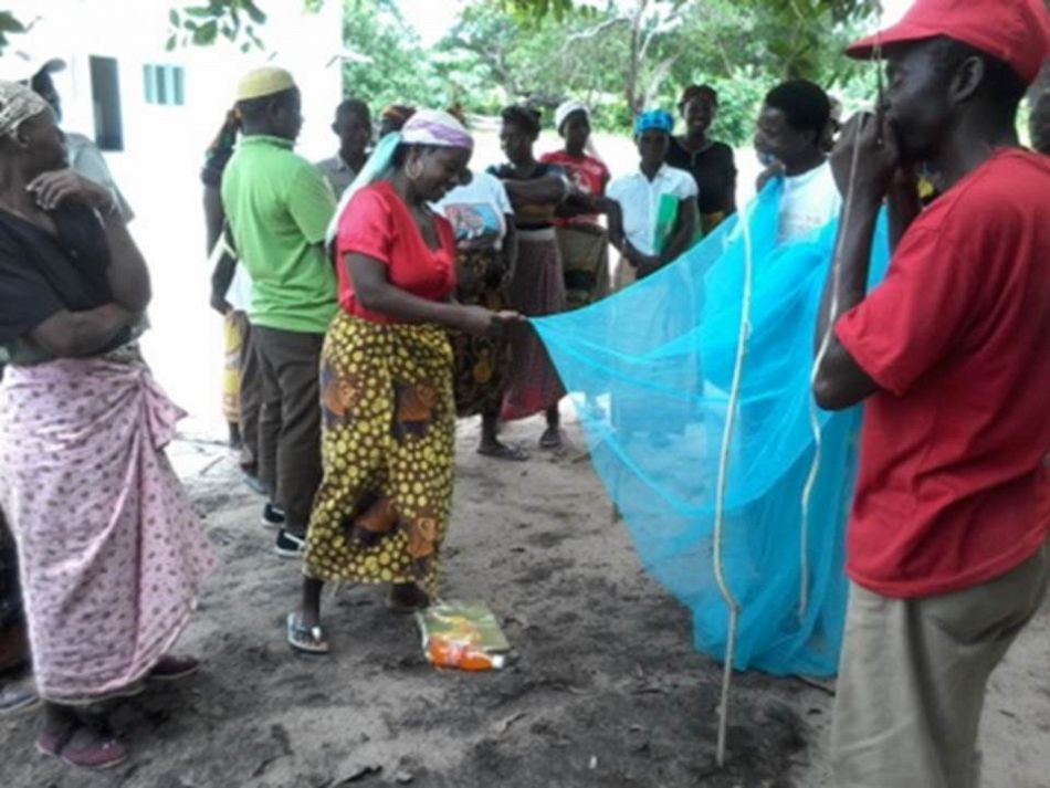 pMembers of Namitatar community structure during a malaria prevention training in the district of Mossuril Mozambiquep